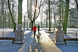 На выходных в Беларуси похолодает